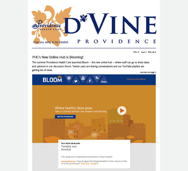 D'vine newsletter